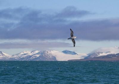 CM-Spitzbergen01