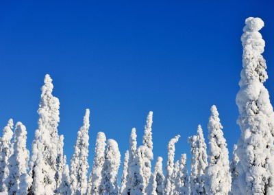 RL_Finnland 1