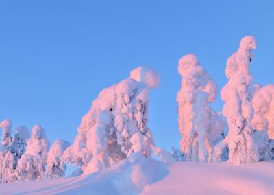 RL_Finnland 2