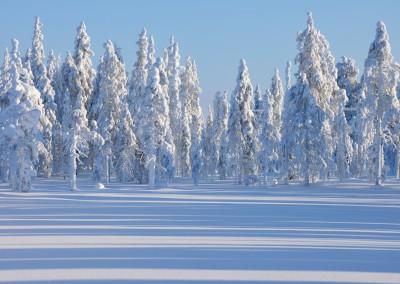 RL_Finnland 4