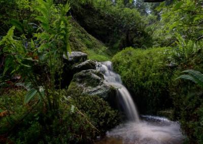 Wasserfall,Allgäu_001
