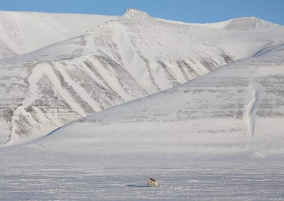CM-Spitzbergen02